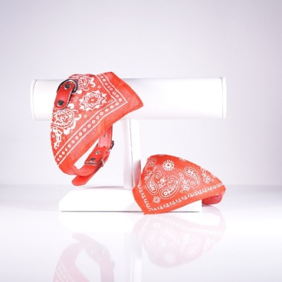 Bandana Collar - Red