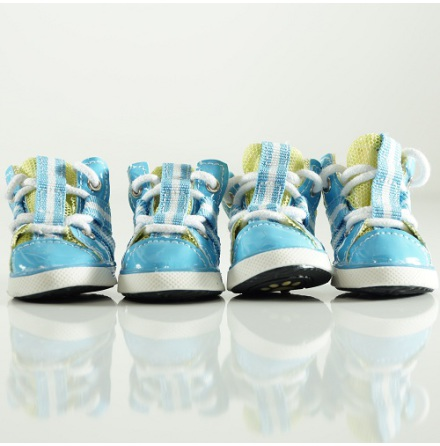Blue Sport shoes 4 pcs