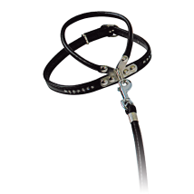 HARNESS W LEASH BLACK W RHINESTONES