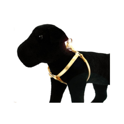 GLOSSY HARNESS GOLD - ADJUSTABLE