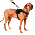 Black Nylon Harness w pull out handle