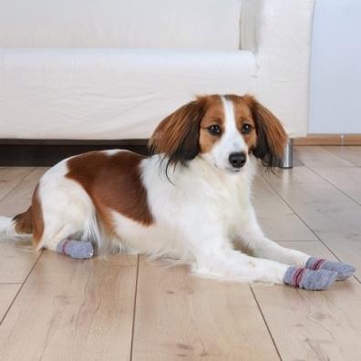 Dog Socks 2pcs