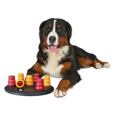 Dog Activity Game Solitaire level 1