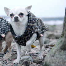 Wool blend jacket - Nut brown