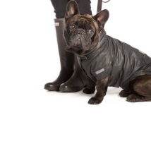 BIG BREED ELIOT Winter coat - Black