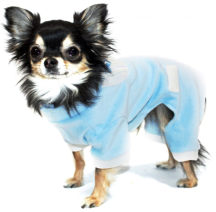 Baby Blue Dog Pyjamas