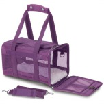 DELUXE Travel Bag  - Purple