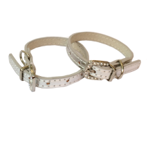 Shiny Charm Collar - Silver