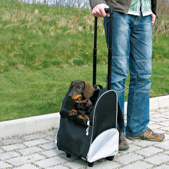 Trolley & Backpack - Black