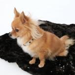 Black fur blanket w black lining