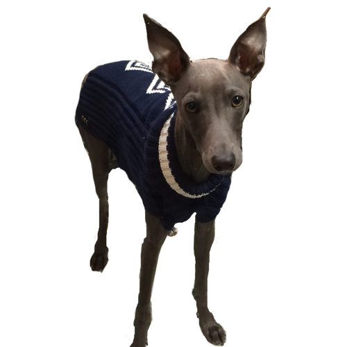 Merino sweater rhombus - blue
