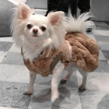 Cosy Furry Coat Dress - Brown