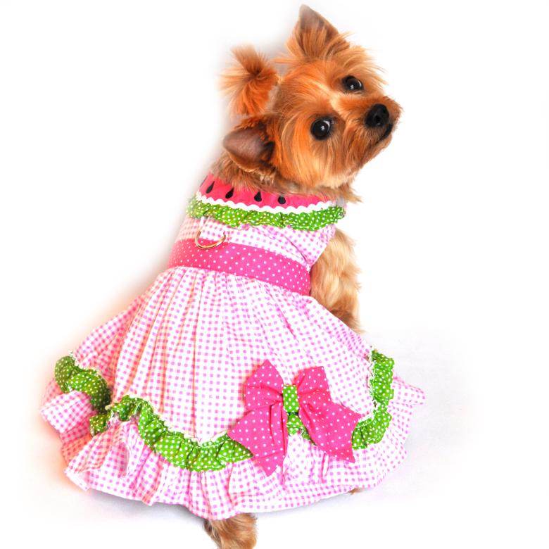 Pink melon Dress