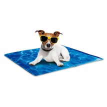AFP Chill Out-Always Cool  Dog Mat