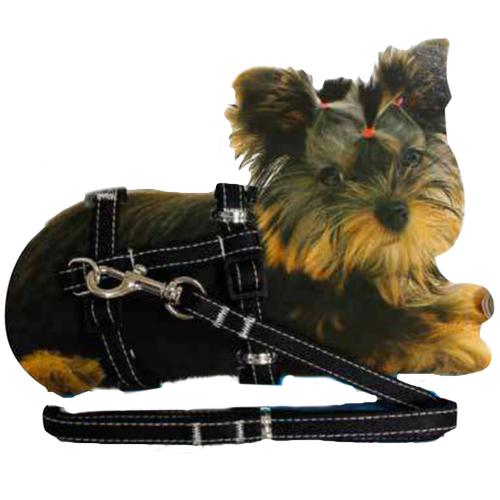 Tiny - Puppy Set nylon harness & Leash - Black 20-29cm x 10mm