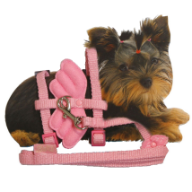 Tiny - Puppy Set nylon adjust. harness & Leash 20-29cm x 10mm - Angel Wings Pink