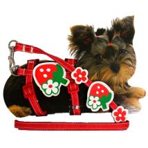 Tiny - Puppy Set nylon adjust. harness & Leash 20-29cm x 10mm - Strawberry