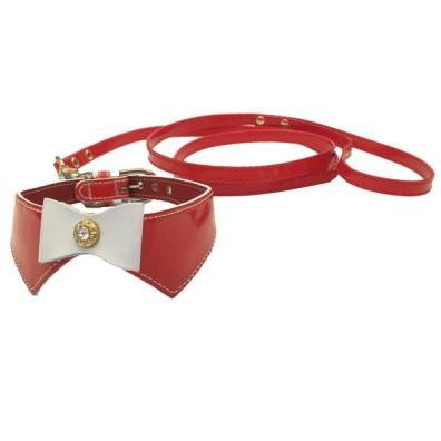 Set Collar & leash  - Red