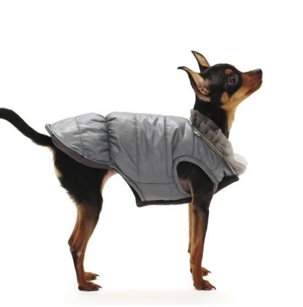 Coat w Tulle Trim - Gray