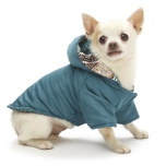 Reversible Coat Paisley Pattern - Turquoise