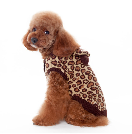 Leo Hoodie Sweater