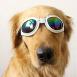 Pet Glasses - White Width: 17cm Chin Strap: max33cm Head Strap max40cm