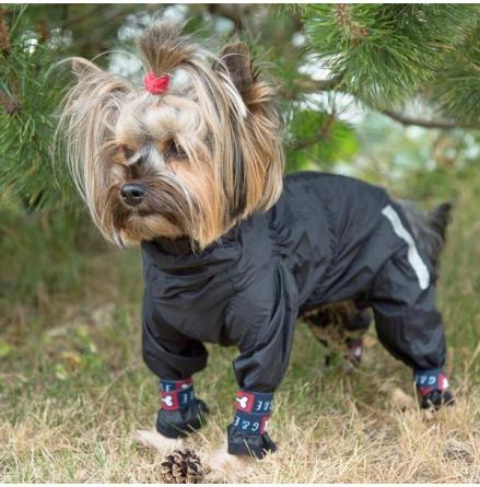 4-leeged Rain Suit - Black