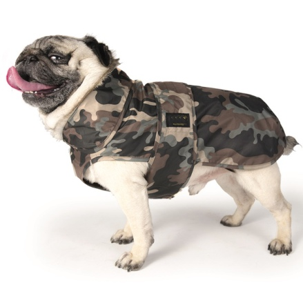 Light Pugs & More Raincoat - Camo