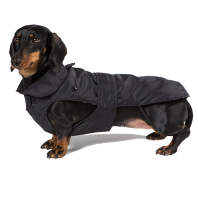Dachshund Trench Coat w Removable Lining - Black