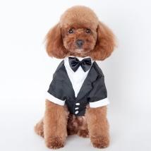 Tuxedo w Black Bow