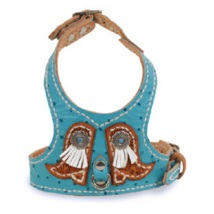 Turquoise Leather Harness