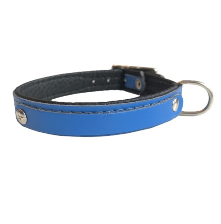 Leather Charm Collar - Blue