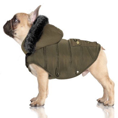 Khaki (Pug&Co) Padded Coat