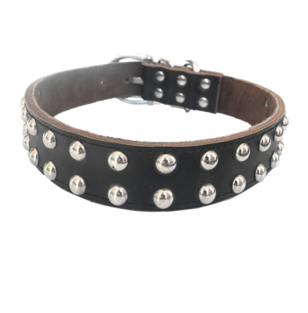 Black collar 2 row soft studs