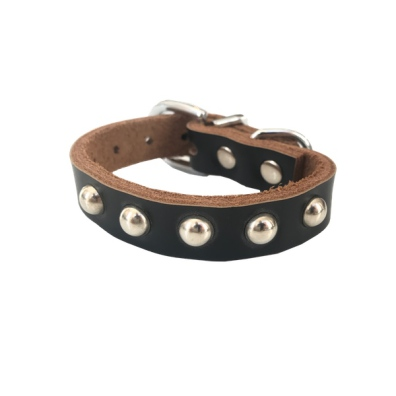 Black collar 1 row soft studs