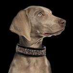 Quarts Vegan leather Collar - Black
