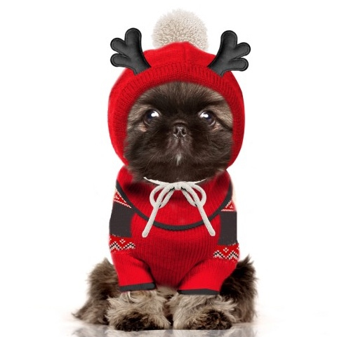 Reindeer Winter Knitted Hat - Red