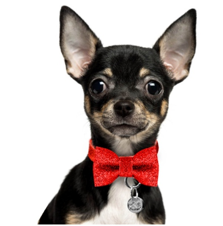 Just a Bow to put on Collars - For Cats and Dogs - Red