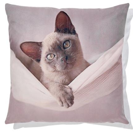 Cushion Cover Cat in a Hammock - Beige  45x45cm