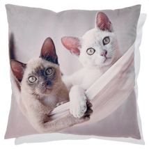 Cushion Cover 2 Cats in Hammock - Beige  45x45cm