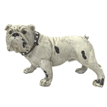 Statue English Bulldog - Cream 28cm