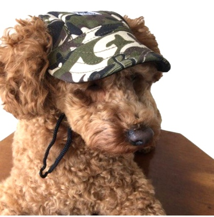 Cute Protective Pet Cap - Camo