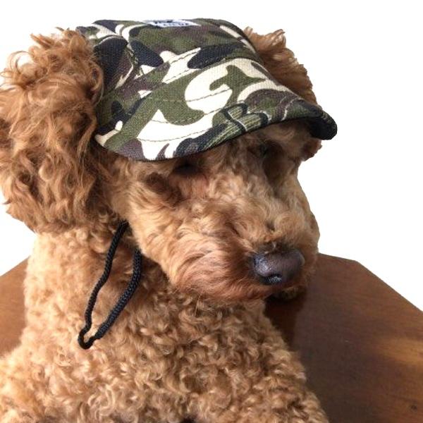 Cute Protective Pet Cap - Camo