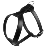Leather Harness - Black (Without Studs)