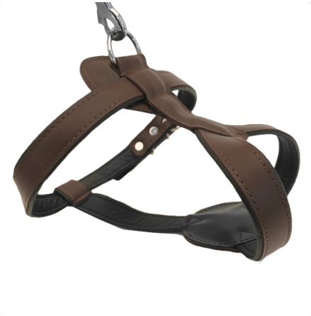 Leather Harness - Brown (Without Studs)