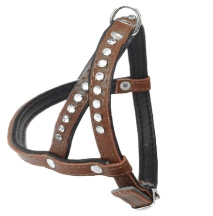 Leather Harness - Brown/Black