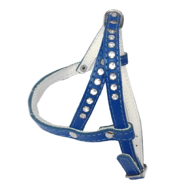 Leather Harness - Blue