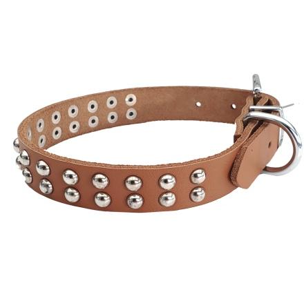 Brown collar 2 row soft studs