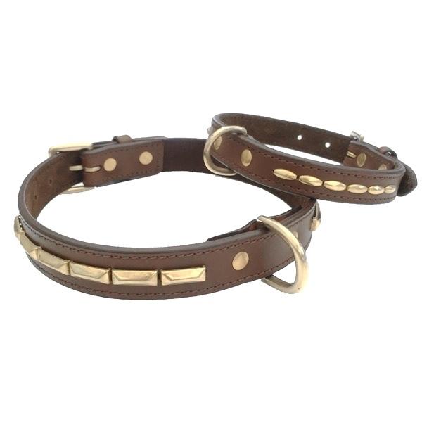 Brooklyn Leather Collar Brass w Soft Studs - Brown
